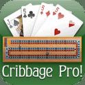 Cribbage Pro Online! – Eine Mischung aus Karten- und Brettspiel