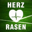 Fussball EM Ticker Herzrasen – Kostenlose Android App mit hochaktuellen Informationen