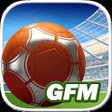 GOAL 2014 – Komplett kostenloser und umfangreicher Fußball Manager